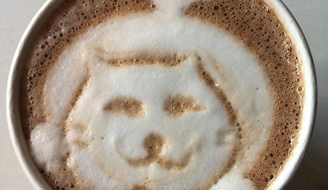 """Aww! Totally unexpected cat in my """"melted Belgian chocolate bar"""" hot chocolate at @syrupdesserts.  #dtla #losangeles"""